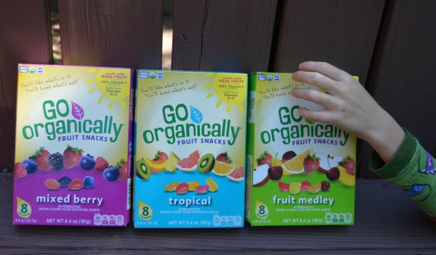 Go-Organically-Fruit-Snacks